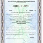 лицензия 1.1 001